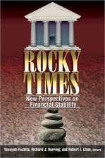 Rocky Times: New Perspectives on Financial Stability