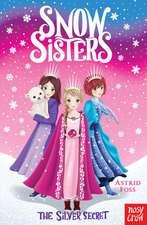 Snow Sisters: The Silver Secret