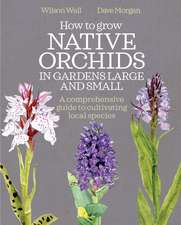 How to Grow Native Orchids in Gardens Large and Small: A Comprehensive Guide to Cultivating Local Species