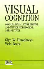 Visual Cognition