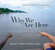 Why We Are Here – Mobile and the Spirit of a Southern City