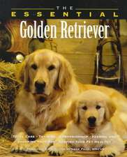 The Essential Golden Retriever