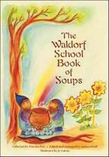 The Waldorf School Book of Soups:  A Life Seen Through the Oracle of the Solar Cross