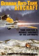 German Anti-Tank Aircraft:  Ploesti!