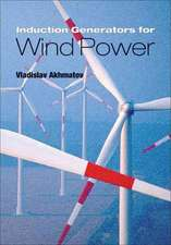 Induction Generators for Wind Power