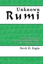 Unknown Rumi:  Selected Rubais and Commentary