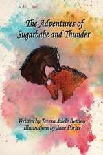 The Adventures of Sugarbabe and Thunder:  Quick, Simple, and Powerful Strategies Towards the Fulfillment of Your Dreams, Goals and Aspirations