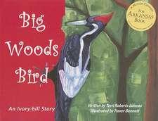 Big Woods Bird: An Ivory-bill Story