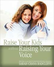 Raise Your Kids Without Raising Your Voice:  Essays on the End of Marriage