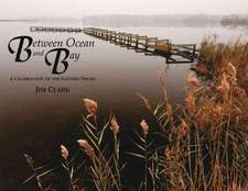 Between Ocean and Bay: A Celebration of the Eastern Shore