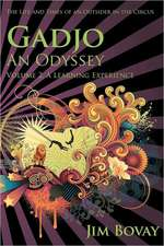 Gadjo, an Odyssey, the Life and Times of an Outsider in the Circus:  A Learning Experience