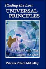 Finding the Lost Universal Principles