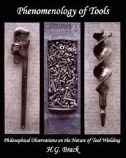 Phenomenology of Tools