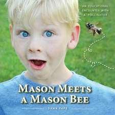 Mason Meets a Mason Bee