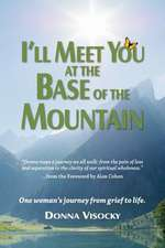 I'll Meet You at the Base of the Mountain