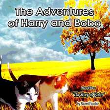 The Story of Bobo