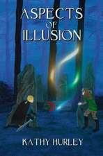Aspects of Illusion