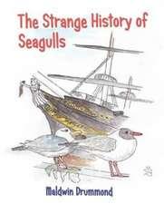 The Strange History of Seagulls