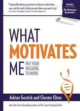 What Motivates Me