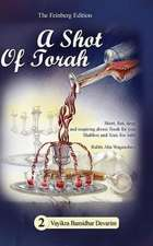 A Shot of Torah Volume 2
