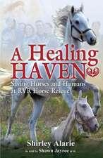 A Healing Haven
