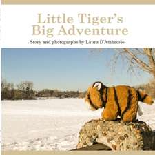 Little Tiger's Big Adventure