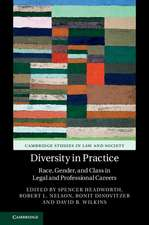 Diversity in Practice: Race, Gender, and Class in Legal and Professional Careers