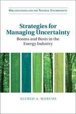 Strategies for Managing Uncertainty  : Booms and Busts in the Energy Industry