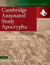 NRSV Study Apocrypha