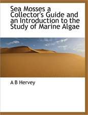 Sea Mosses a Collector's Guide and an Introduction to the Study of Marine Algae
