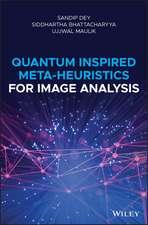 Quantum Inspired Meta–heuristics for Image Analysis