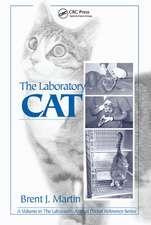 LABORATORY CAT THE