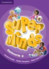 Super Minds Level 6 Flashcards (Pack of 98)