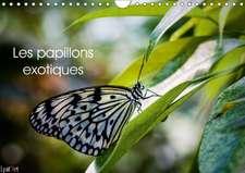 Les papillons exotiques (Calendrier mural 2017 DIN A4 horizontal)