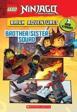 Chapter Book #12 (Lego Ninjago)