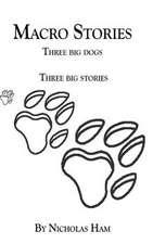 Macro Stories