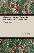 Common Herbs as Grown in the Hortyards at Gulval and Their Uses:  Its Whys and Wherefores