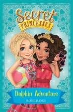 Secret Princesses: Dolphin Adventure