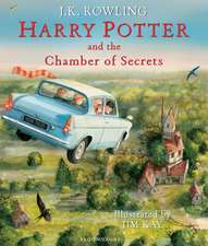 Harry Potter and the Chamber of Secrets, ediția ilustrată