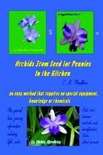 Orchids from Seed for Pennies