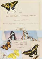 The Butterflies of Titian Ramsay Peale Journal:  100 Cards in 4 Books, 25 in Each