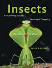 Insects – Evolutionary Success, Unrivaled Diversity and World Domination