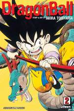 DRAGON BALL VIZBIG ED TP VOL 02