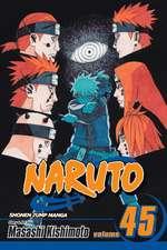 Naruto, Vol. 45