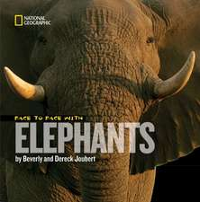 Face to Face with Elephants