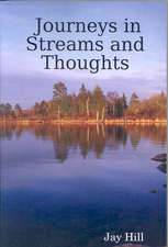 Journeys in Streams and Thoughts