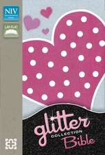NIV Glitter Bible Collection Flexicover Pink Heart