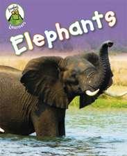 Froglets: Learners: Elephants