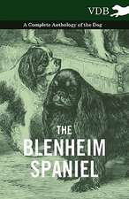 The Blenheim Spaniel - A Complete Anthology of the Dog -