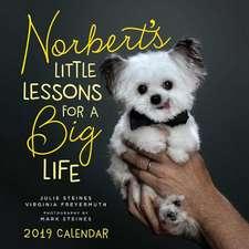 Norbert's Little Lessons for a Big Life 2019 Wall Calendar